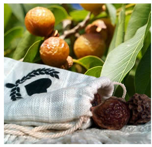 Soap Nuts - The natural laundry soap
