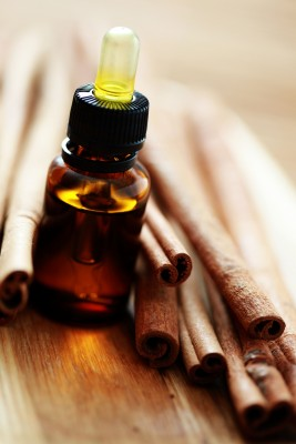 Can Cinnamon Oil Fight This Winter's Microbial Assault?